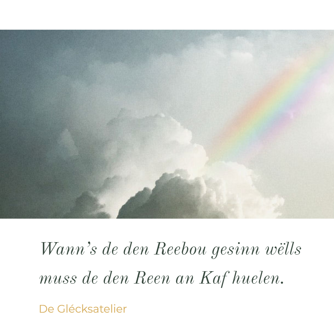 Wer den Regenbogen will muss den Regen in Kauf nehmen. If you want the rainbow you have to deal with the rain. John Green