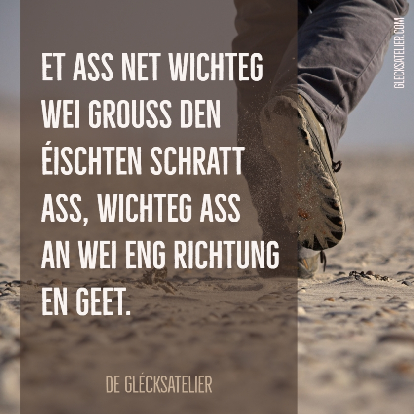 Et ass net wichteg wei grouss den éischten Schratt ass, wichteg ass an wei eng Richtung en geet. Es ist nicht wichtig, wie groß der erste Schritt ist, sondern in welche Richtung er geht. Direction is so much more important than speed. Many are going nowhere fast.