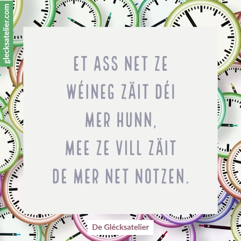 Et ass net ze wéineg Zäit déi mer hunn, mee ze vill Zäit de mer net notzen. Es ist nicht zu wenig Zeit, die wir haben, sondern es ist zu viel Zeit, die wir nicht nutzen. It is not that we have a short time to live, but that we waste a lot of it.